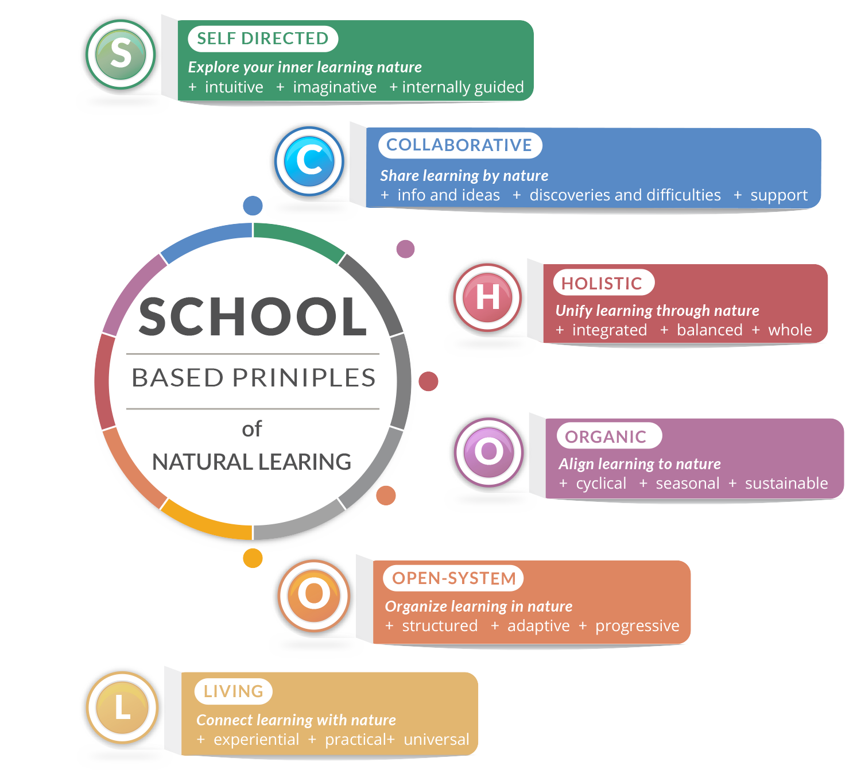 SCHOOL Principles